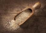 quinoa.123